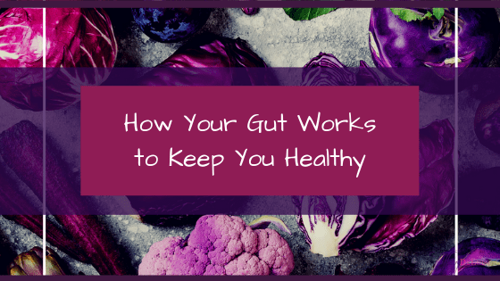 How your gut works